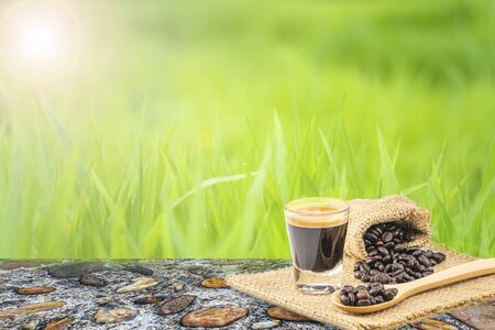 Closeup cup of espresso coffee and roasted coffee beans on green grass blurred greenery background in garden, Green nature background, Nature spring grass background texture, Copy space. Imagens