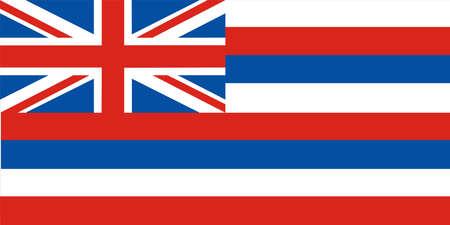 Hawaii Flag 免版税图像