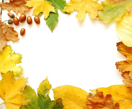 Autumn Leaves Frame Stock Photo - 5805152