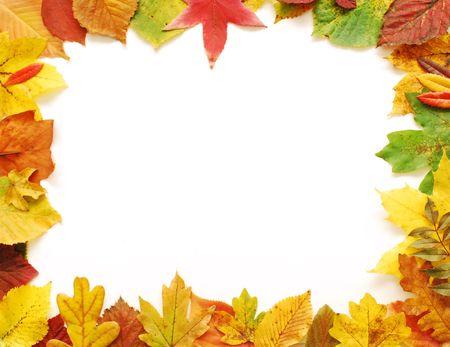 Autumn Leaves Frame Stock Photo - 5826261