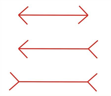 perceive: queste righe hanno la stessa dimensione, ma sembra differente