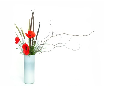 three red poppy ikebana nageire on white background photo