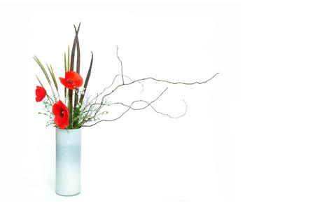 ikebana: three red poppy ikebana nageire on white background Stock Photo