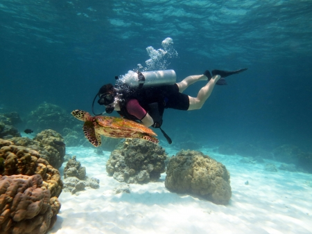 Young Man Scuba Diver between Water Surface near a turtle Foto de archivo