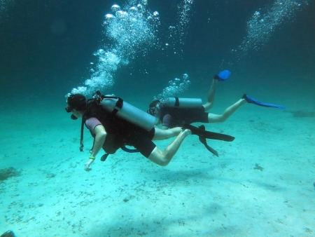 Two Scuba Divers between Water Surface photo