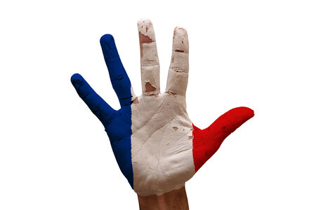 france flag: man hand palm painted flag of france