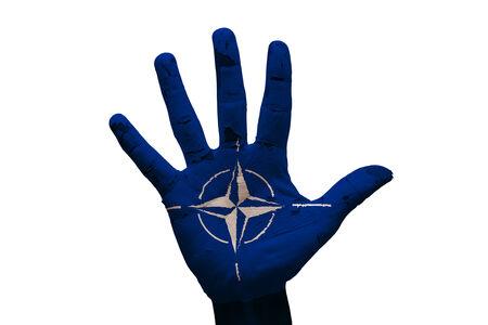 north atlantic treaty organization: man hand palm painted flag of North Atlantic Treaty Organization