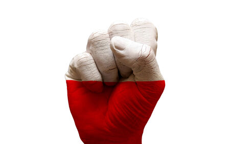 aggresive: man hand fist painted country flag of poland