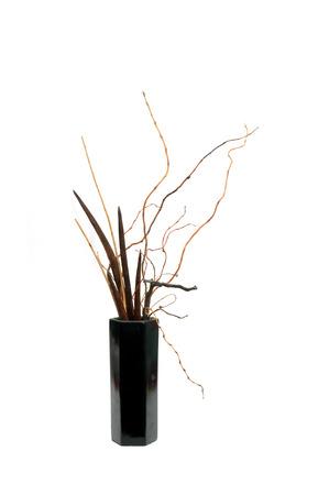 ikebana: dry plants traditional japanese arangement ikebana over white Stock Photo