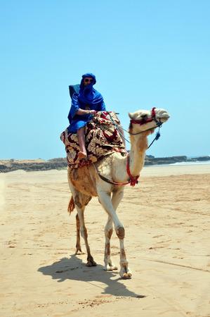 morocco berber riding camel on the atlantic ocean beach photo