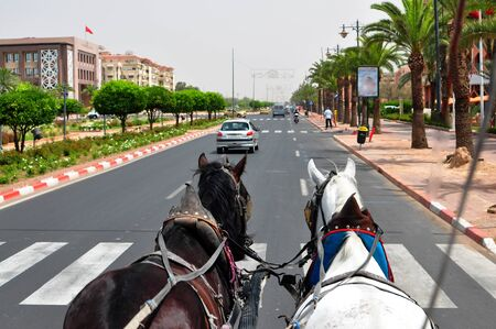 horse and carriage: marrakech city morocco horse carriage street ride Stock Photo