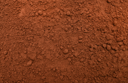 dehydrated: dry dehydrated cocoa powder condiment texture pattern