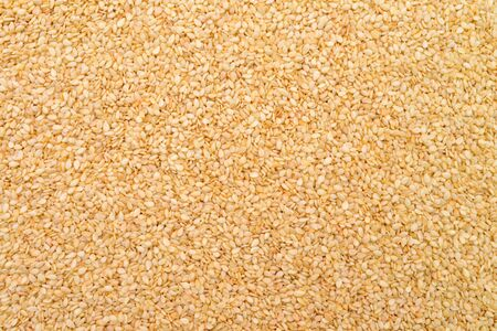 plant seed: sesame plant seed texture natural pattern background