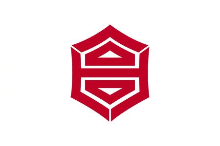 kochi: Japan Kochi prefecture Kochi city flag illustration