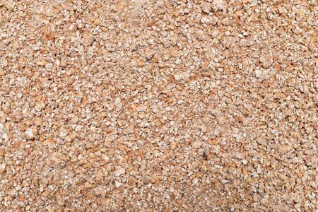 cereal plant: buckwheat cereal plant grinded seeds texture pattern