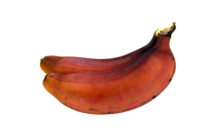 Red bananas fruits isolated over white