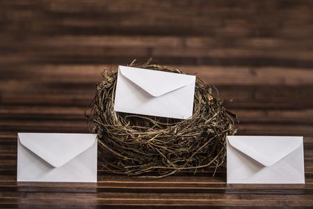 nido de pajaros: sobre en y fuera del nido