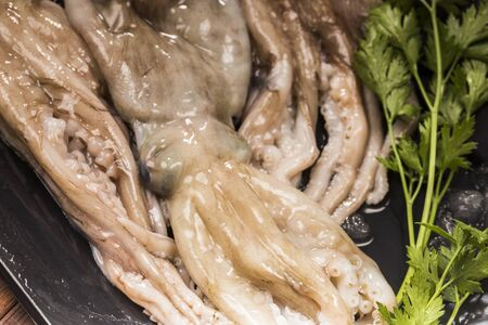 frescura: pulpo crudo y frescura