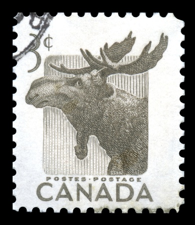 moose antlers: Canada Postage Stamp with an engraved image of an elk celebrating national wildlife week in 1953