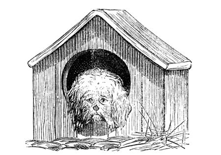glum: An engraved vintage illustration image of a dog in a doghouse kennel, from a Victorian book dated 1870 that is no longer in copyright
