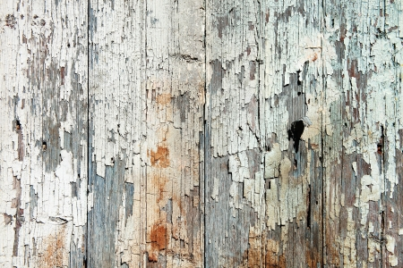 Old wood  planks with white peeling paint background photo