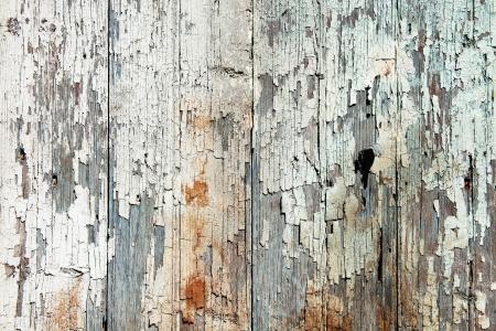 knotting: Vecchie tavole di legno con peeling vernice bianca sfondo Archivio Fotografico