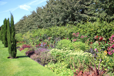 Old fashioned formal cottage garden herbaceous flower bed border  photo