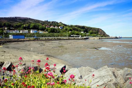 pembrokeshire: Fishguard Bay, Pembrokeshire, Wales, UK, a popular Welsh coastline for tourist visitors
