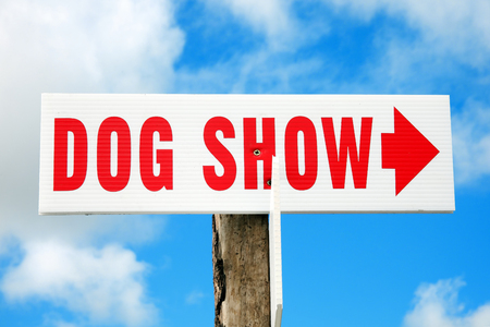outdoor event: Dog show red and white arrow sign directing visitors to an outdoor event