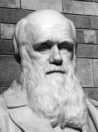 black history: Black and white image of a statue of Charles Darwin1809-82 which was placed in the central hall of the Natural History Museum in 1885, London, England, UK. Darwin is noted for his work on evolution and his published book The Origin Of Species