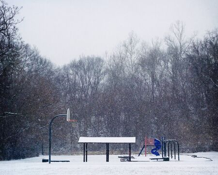Snow fall in park