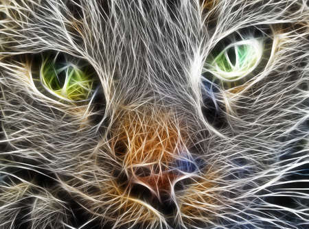 fractal image close up of a cats face photo