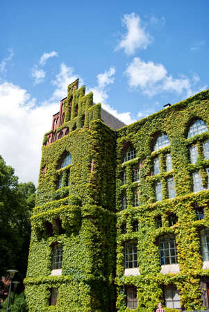 education in sweden: A very old and grand ivy covered building on the campus grounds of Lund university in Sweden.