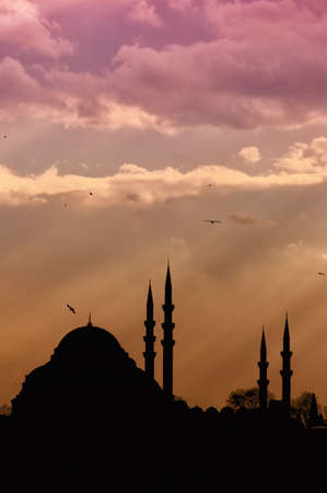 renowned: A view of the majestic Suleiman Mosque in Istanbul, Turkey.