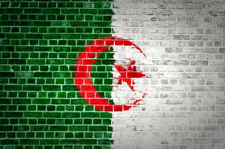 algerian flag: An image of the Algerian flag painted on a brick wall in an urban location