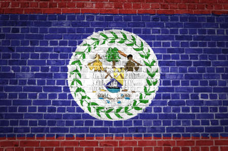An image of the Belize flag painted on a brick wall in an urban location photo