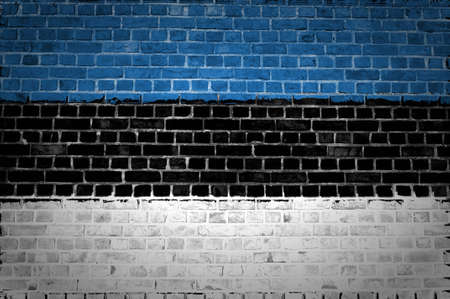 An image of the Estonia flag painted on a brick wall in an urban location Stock Photo - 12422701