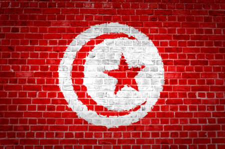 An image of the Tunisia flag painted on a brick wall in an urban location