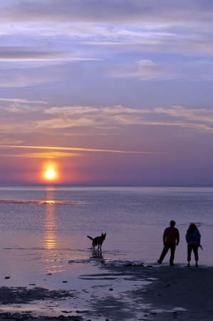 A happy couple take their dog for a walk on the beach against the backdrop of a romantic sunset photo