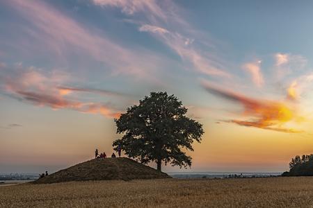 Ronneberga slopes is a collection of burial mounds 5 km east of Landskrona in SkÃ¥ne, Sweden. Stok Fotoğraf