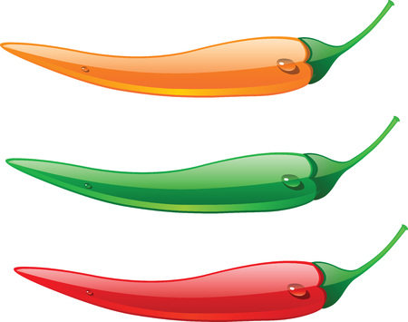 chilly: Chillies in different color Illustration