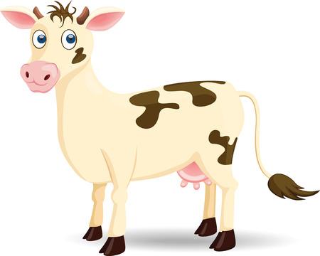 animal leg: Cow
