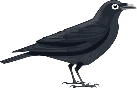 carrion: Crow Illustration