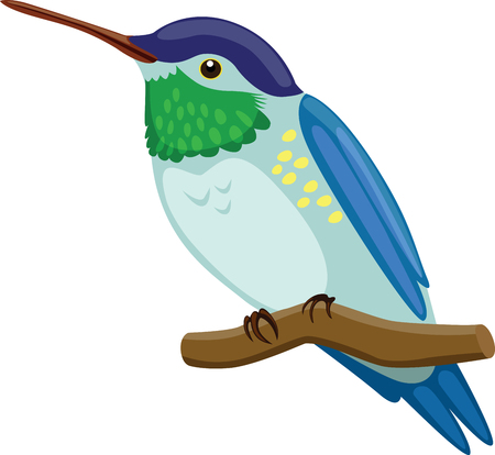 legged: Hummingbird