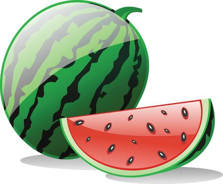 fruit and veg: Water Melon Illustration