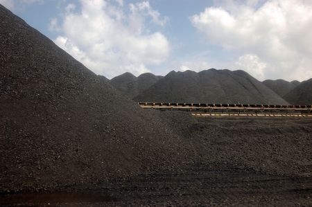 conveyor rail: Coal conveyor in a power facility