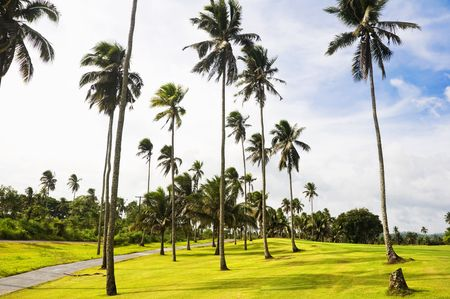 A beautiful golf course in the Philippines