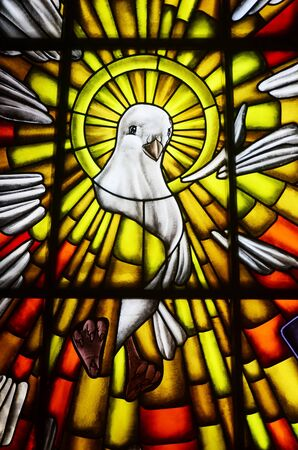 Stained glass of white dove in a Catholic church, the symbol of the Holy Spirit of God photo