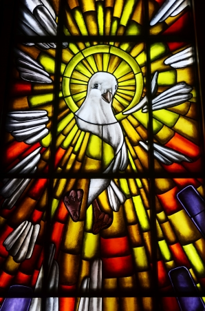 Stained glass of white dove in a Catholic church, the symbol of the Holy Spirit of God Stock Photo