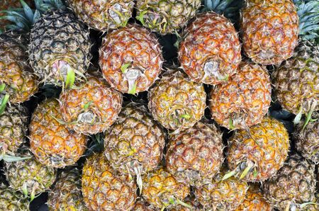 ripeness: Stack of pineapples in different ripeness stages